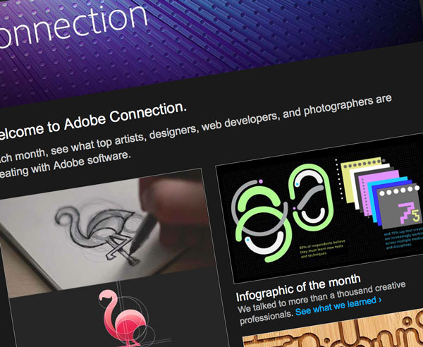 Adobe Connection newsletter-authoring tool