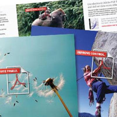 Adobe Acrobat Campaign